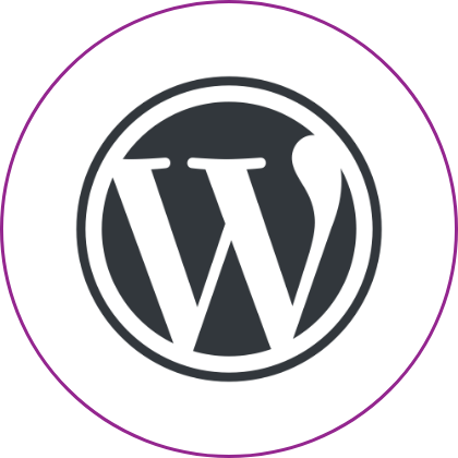 Wordpress development company